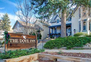 Black Friday Discount at The Dove Inn - Golden Colorado